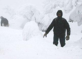 Surviving A Winter Storm