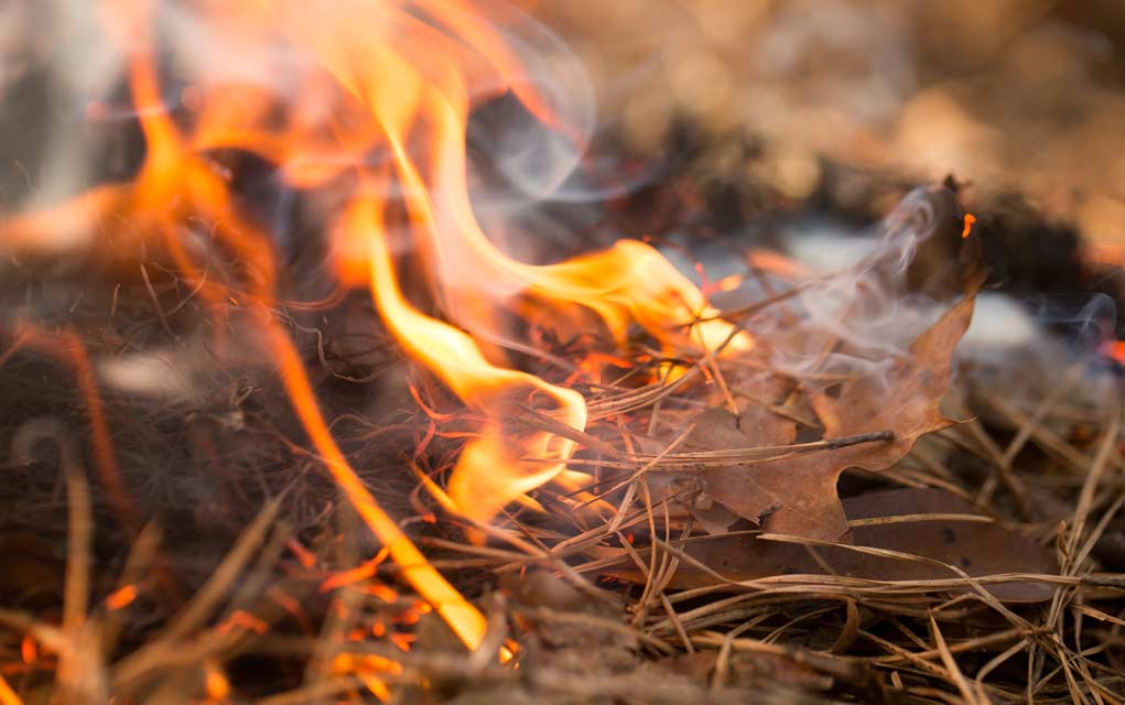 Backyard-Burn-Pile-Safety