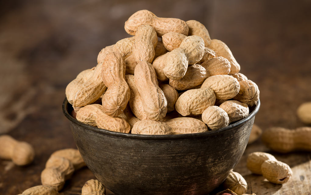 Are-Peanuts-a-Good-Survival-Food