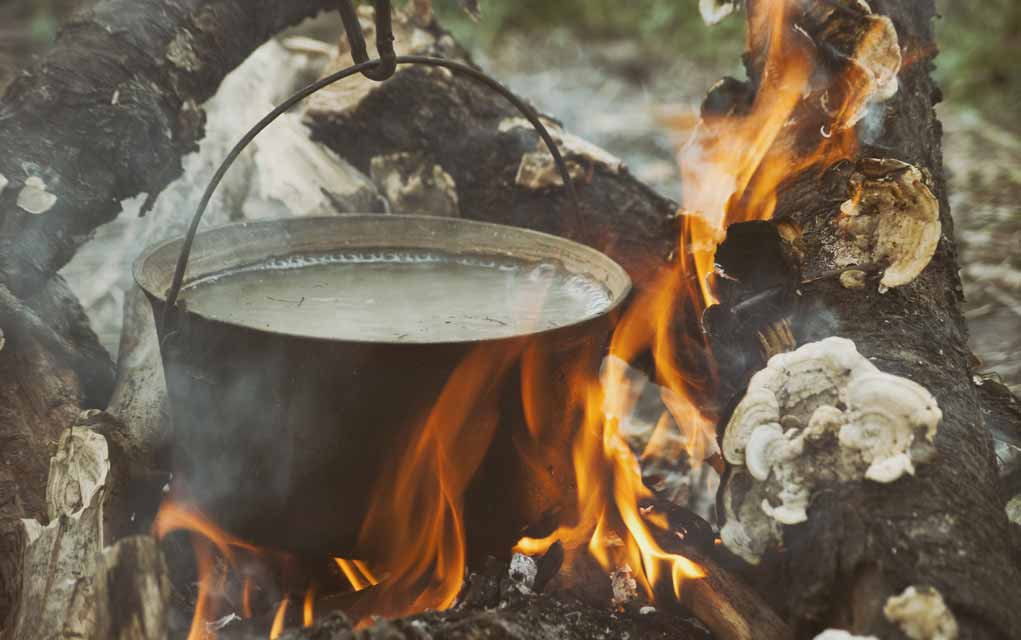 How-to-Get-More-Nutrients-from-Food-in-a-Survival-Situation