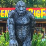Is-it-Legal-to-Shoot-a-Sasquatch?