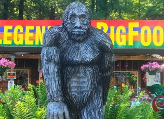 Hunting Bigfoot? You Had Better Check Local Laws First