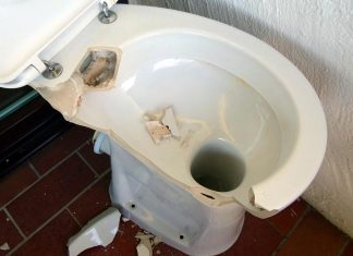 Disposing of Human Waste in a Catastrophe