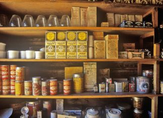 Prepper Food: Canned vs Dry