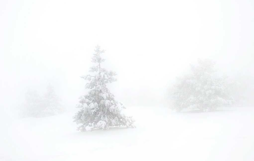 Freak-Blizzard-Leaves-Dozens-In-Dire-Situation