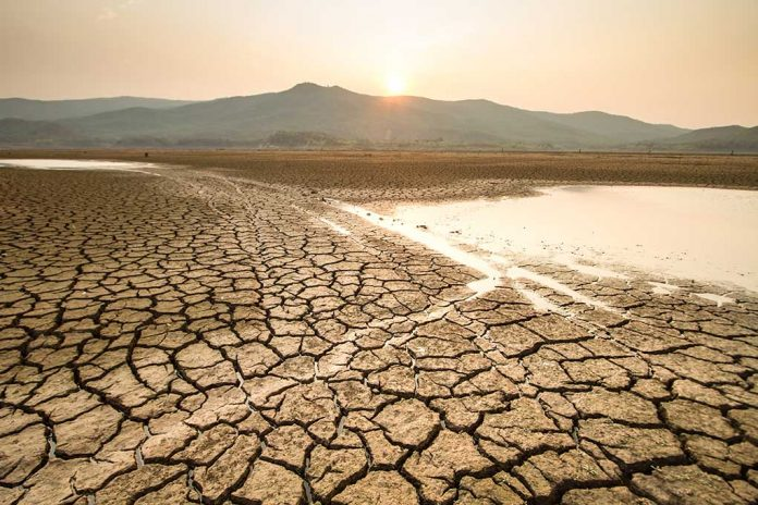 How-to-Survive-a-Drought