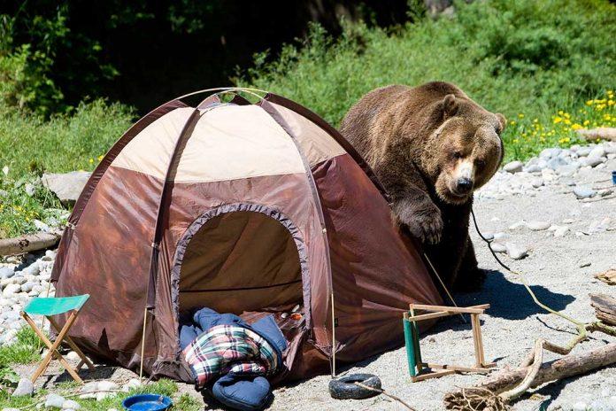 How-to-Avoid-an-Encounter-With-a-Bear